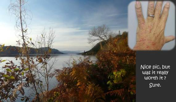 SCOTLAND 2019 - Our Three Week Driving Trip - Part 4 - Loch Ness and Scratched Hand.jpg